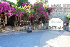 Cetate Rhodos