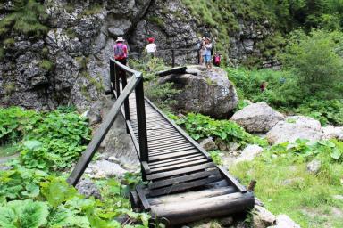 Primul pod, Cheile Zanoagei