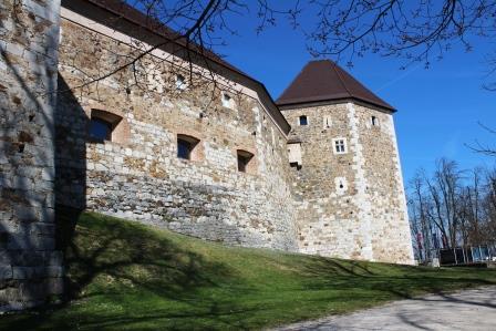 Cetate Ljubljana